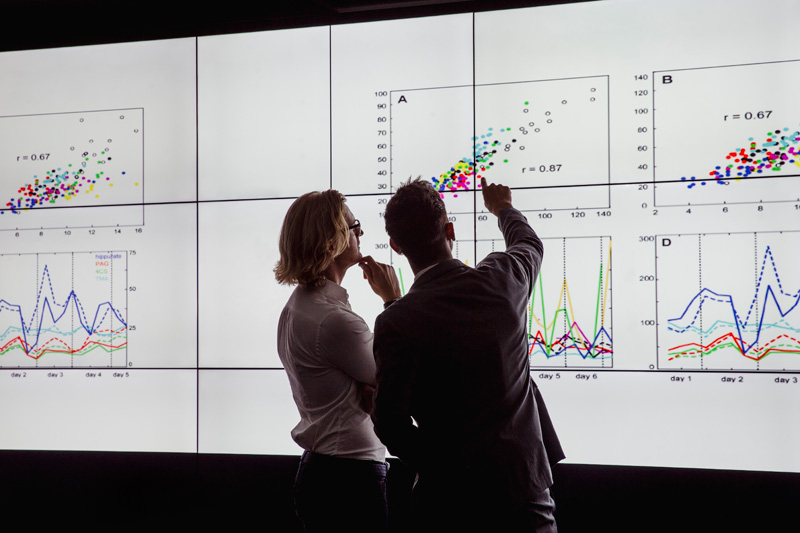6dq Analysis & Insight image